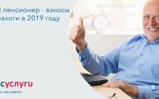 Может ли пенсионер открыть ИП в России