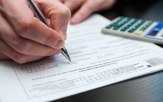 ИП на вмененке какие документы нужно вести