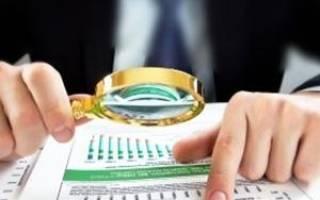 Задолженность бюджету по налогам актив или пассив