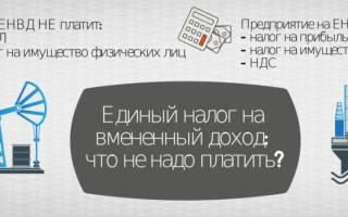 Какой единый налог для ИП в России