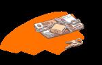 Страхуются ли счета ИП в банке