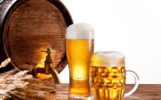Последние новости ЕГАИС ИП и пиво